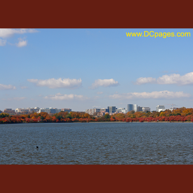 View of Rosslyn from Tidal Basin in Washington DC.