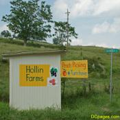 Hollin Farm offers many, MANY fruits and vegetables.