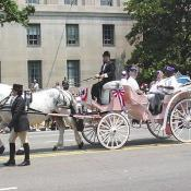 War vets in a horse and buggy